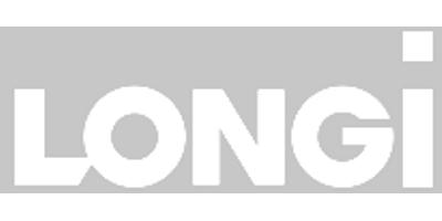 Longi Silicon Materials