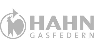 Hahn Gasfedern